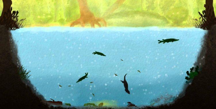 Conoce el funcionamiento de un ecosistema natural en Among Ripples